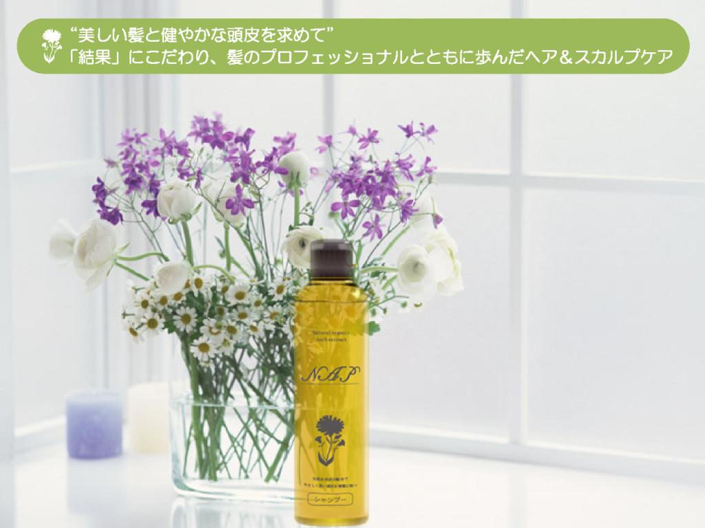 nap_shampoo_review